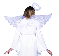 Adult Angel Wings with Boa