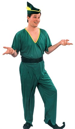 Adult Peter Pan/Elf Costume
